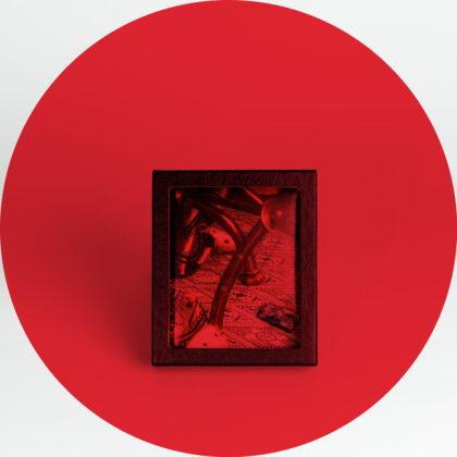 Atelier Lachaert Dhanis Pigment