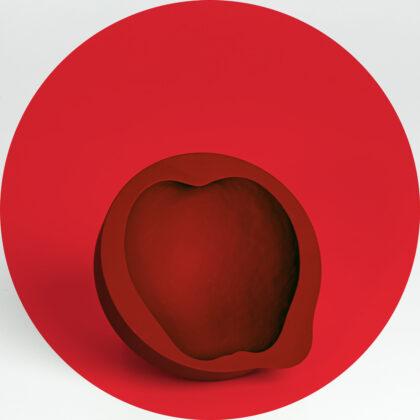 Mischer Traxler Apple