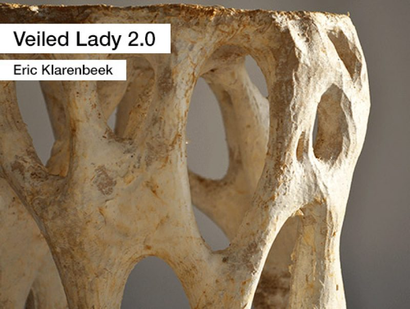 A07 1 Veiled Lady